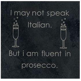 Fluent in Prosecco - Slate Prosecco Coaster