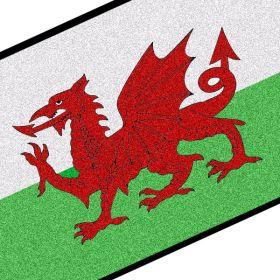 Welsh Flag Doormat