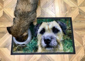 Personalised Pet Photo Mat