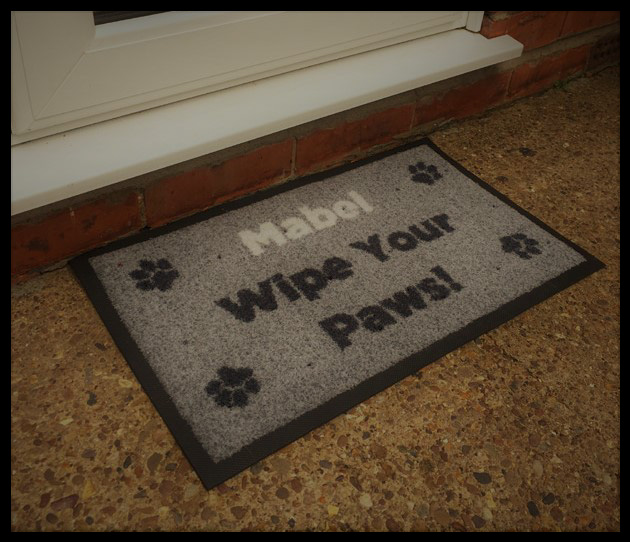 Door Mat for Outside